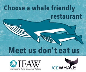 IFAW-meet-us