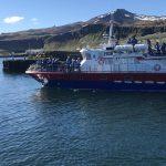 whale watching olafsvik iceland
