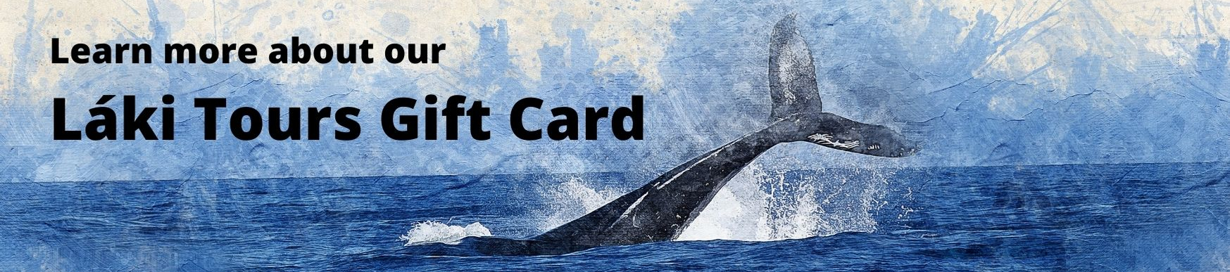 Láki Tours Iceland Gift Card Whale Watching