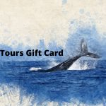 iceland gift card - icelandic gifts online