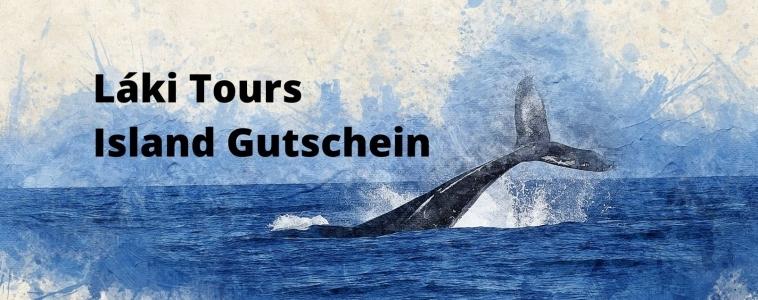 Láki Tours Island Gutschein – Walbeobachtung Island Geschenkgutschein – Geschenke für Island Fans